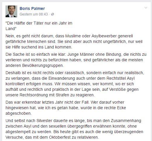Boris Palmer Facebook