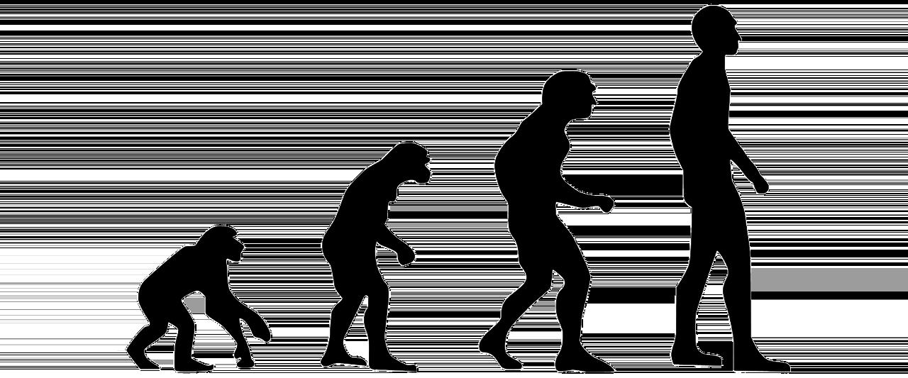 Politische und kulturelle Evolution – gibt es soetwas? - Philosophia Perennis