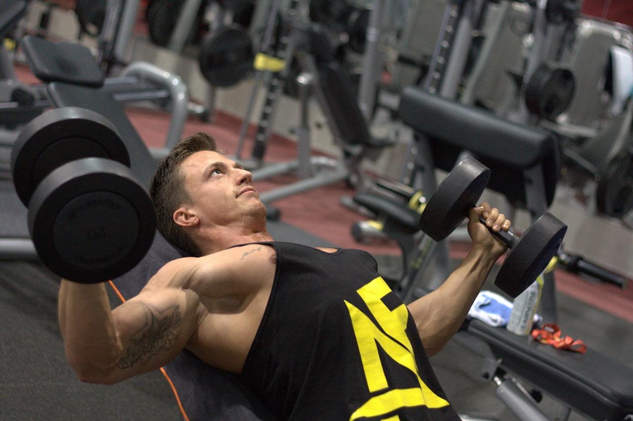 [Bild: fitness-3502830_1280.jpg]